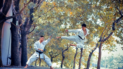 Top 5 Martial Arts